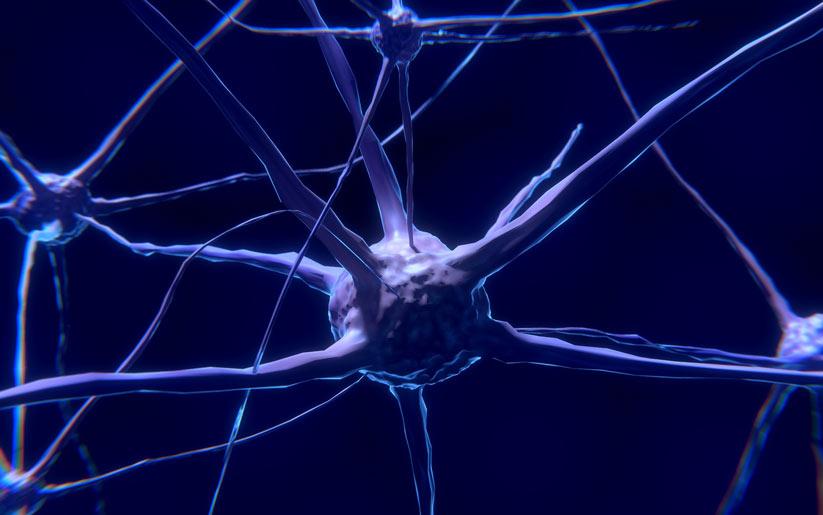 sağlıklı yaşamak için beyni beslemek