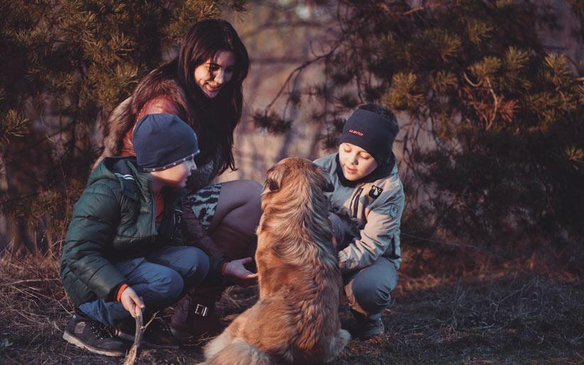 mutluluk için evcil hayvan sahiplenin