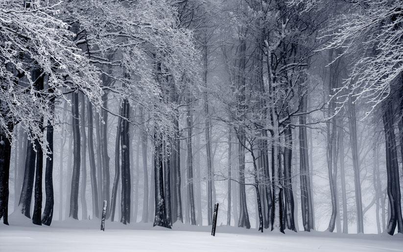 kış ayları psikolojimizi nasıl etkiliyor