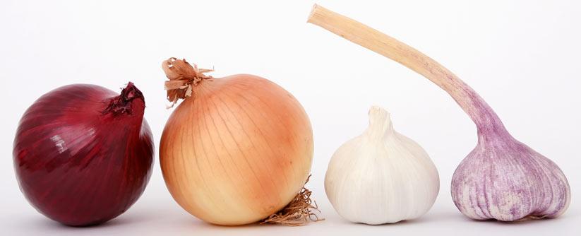 mide sağlığı için soğan ve sarımsak tüketin